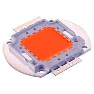 100 W Festoon LED növény izzók 100 Integrált LED 5000 lm Lila Dekoratív DC30-36 V 1 db.