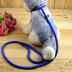 Kediler Köpekler Tasma Kayışı Egzersiz İpi Ayarlanabilir/İçeri Çekilebilir Tek Renk Kırmızı Siyah Mavi Çıplak Naylon
