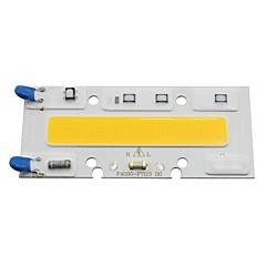 Ledet pære lampe cob lyskilde 30w 220v input smart ic fit chip til diy led floodlight hvid / varm (1 piece)