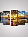 5 Panels Sunset River Landscape Picture Print Modern Wall Art on Canvas Unframed
