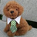 hesapli Köpek Giyim ve Aksesuarları-Köpek Düğüm/Papyon Bağı Köpek Giyimi Kareli Siyah Kahve Kırmzı Yeşil Gökküşağı Pamuk Kostüm Evcil hayvanlar için Erkek Tatil Cosplay