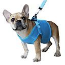 hesapli Köpek Giyim ve Aksesuarları-Kedi Köpek Koşum Takımı Tasma Kayışı Ayarlanabilir / İçeri Çekilebilir Nefes Alabilir Güvenlik Solid File Siyah Mor Kırmzı Mavi Pembe