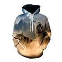 رخيصةأون كنزات هودي رجالي-رجالي مبالغ فيه فضفاض بنطلون - 3D ذئب, طباعة التقزح اللوني / كم طويل / الخريف / الشتاء