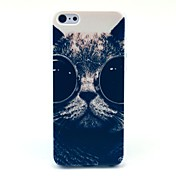용 패턴 케이스 뒷면 커버 케이스 고양이 하드 PC 용 Apple iPhone 5c