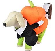 Недорогие -Собака Костюмы Комбинезоны Одежда для собак Очаровательный Косплей Хэллоуин Тыква Оранжевый Костюм Для домашних животных