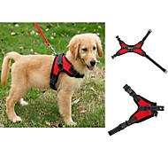 Недорогие -Собака Ремни Регулируется / Выдвижной Жилет Однотонный Сетка Черный Лиловый Красный Синий