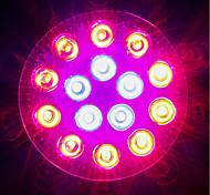 preiswerte -1620-1800lm E27 Wachsende Glühbirne 18 LED-Perlen Hochleistungs - LED Blau Rot 85-265V