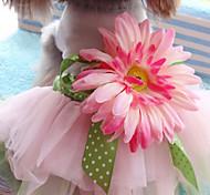 Недорогие -Кошка Собака Платья Одежда для собак Очаровательный Мода Цветы Радужный Костюм Для домашних животных