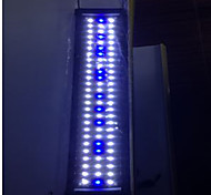 Aquarium LED Lighting White Blue Energy Saving 2 Mode LED Lamp 220V