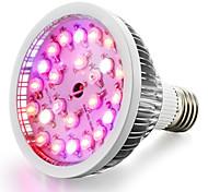 Недорогие -1шт 100-150 lm E26/E27 Растущие лампочки 24 светодиоды Высокомощный LED Тёплый белый Естественный белый UV (лампа черного света) Синий