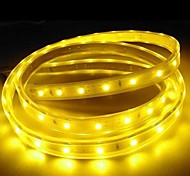 3M 220V  Higt Bright LED Light Strip Flexible 5050 180SMD Three Crystal Waterproof Light Bar Garden Lights with EU Power Plug
