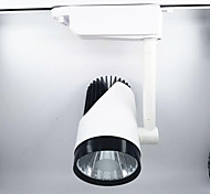 Недорогие -1шт 30W 1 светодиоды Простая установка Вращающаяся лампа Тёплый белый Естественный белый Белый AC 86-220