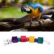 طائر لعب الطيور البلاستيك خشب متعددة الألوان