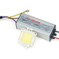 tanie Zasilacze-wysokiej mocy lampy LED cob Chip IP67 30W Sterownik 110V - 240V dla majsterkowiczów Naświetlacz wyróżnionym ciepły / zimny biały (1 szt)