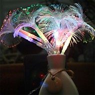 voordelige LED-snoerverlichting-6W W Verlichtingsslingers 20 lm <5V 2.5 m 10 leds