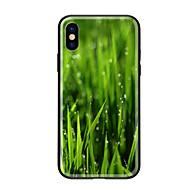 Недорогие Кейсы для iPhone 8-Кейс для Назначение Apple iPhone X iPhone 8 С узором Кейс на заднюю панель Растения Твердый Закаленное стекло для iPhone X iPhone 8 Pluss