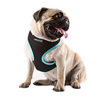 cheap Pet Supplies Accessories-Cat Dog Harness Adjustable / Retractable Breathable Solid Nylon Mesh Orange Rose Green Blue