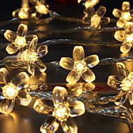 Χαμηλού Κόστους -10 ίντσες Φώτα σε Κορδόνι 100 LEDs Θερμό Λευκό Διακοσμητικό 220-240 V 1set