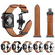Apple Watch remeni