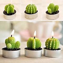 6 x 선인장 식물 냄비 세트 양초 촛불 파티 결혼식 (임의의 색상)