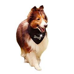 お買い得  猫の服-ネコ 犬 コスチューム ネックレス ネクタイ / ボウタイ 犬用ウェア ソリッド スカル A B C コットン コスチューム ペット用 夏 男性用 女性用 カジュアル/普段着 ファッション