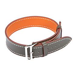 для Samsung Gear s3 приграничных ремешки s3 классических современных watcbands для натуральной кожи часового браслета ремешка группы