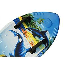 Surfplank watersporten zomer zwemmen essentieel