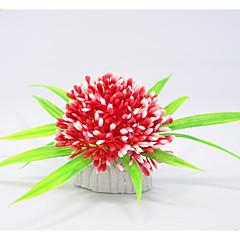 Διακόσμηση Ενυδρείου Υδρόβιο φυτό