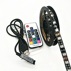 お買い得  LED ストリングライト-ZDM® ライトセット 60 LED RGB リモートコントロール 防水 <5V
