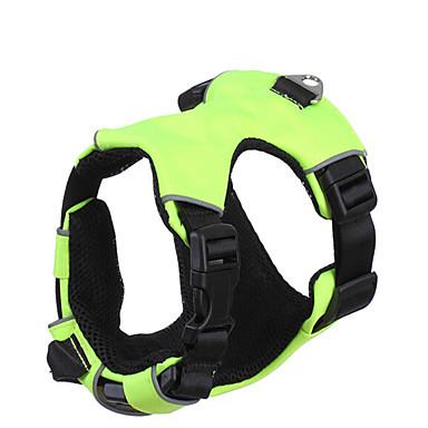 Câine Hamuri Ajustabile / Retractabil Respirabil Pentru Mașină Alergat 300M Siguranță Antrenament Mată Nailon Rosu Verde Albastru