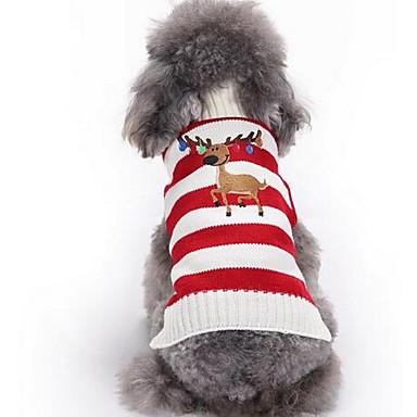 Pies Swetry Ubrania dla psów Codzienne Modny Rysunek Czerwony Green