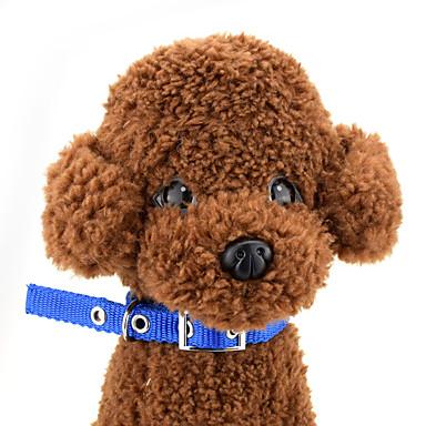 Câine Gulere Ajustabile / Retractabil Rosu Albastru Negru