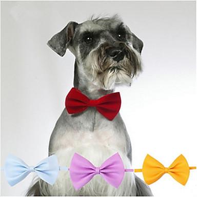 Câine Cravată/Papion Îmbrăcăminte Câini Casul/Zilnic Solid