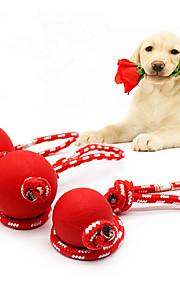 Hund Hundleksak Husdjursleksaker Tuggleksaker Inget För husdjur