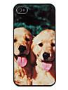 Cute Puppy Padrão Hard Case para iPhone 4/4S
