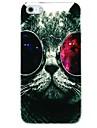 Gato com Colorfui Óculos Padrão Capa Case para iPhone 4/4S