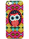 Colorful Glasses Owl Pattern Case for iPhone 5/5S iPhone 5 Cases