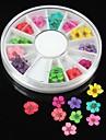36PCS 12 Colours Natural Dried Flower Wheel Nail Art Decoration