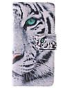 белый дизайн тигра пу кожаный чехол для всего тела с подставкой и слот для карт памяти для iPhone 5 / 5s