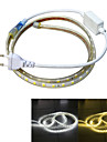 Power Supply 60 LEDs Warm White White Waterproof Suitable for Vehicles 220V