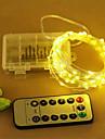 Lysslynger 100 lysdioder Varm hvid Kold hvid RGB Fjernbetjening <5V