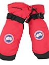 Лыжные рукавицы Универсальные Рукавицы Сохраняет тепло Водонепроницаемость С защитой от ветра Флокирование Лыжи Зима