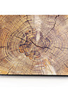 případ Macbook dřevěné obilí pvc pro vzduch pro retinu 11 12 13 15 pouzdro na notebook pro macbook nové pro 13,3 15 palců s dotykovým pruhem